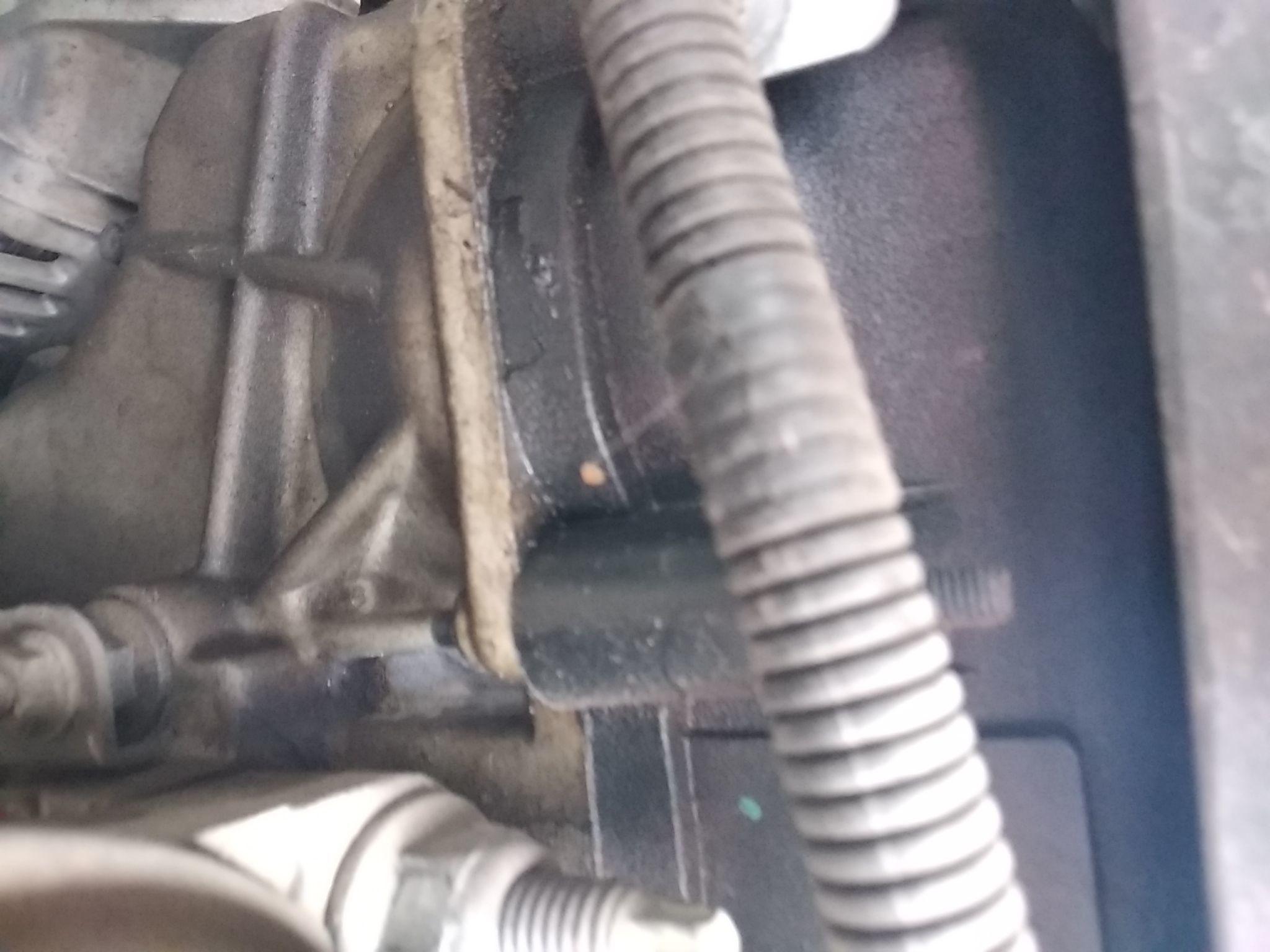 致胜发动机皮带安装图